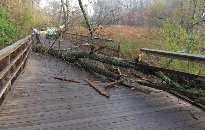 Big Creek Greenway Storm Damage