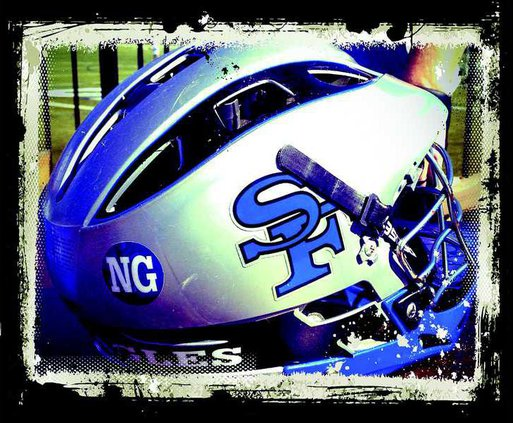 Helmet with NG sticker for Nicole Garrish