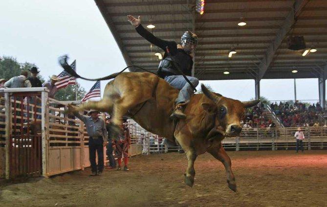 Fair Rodeo 4 web
