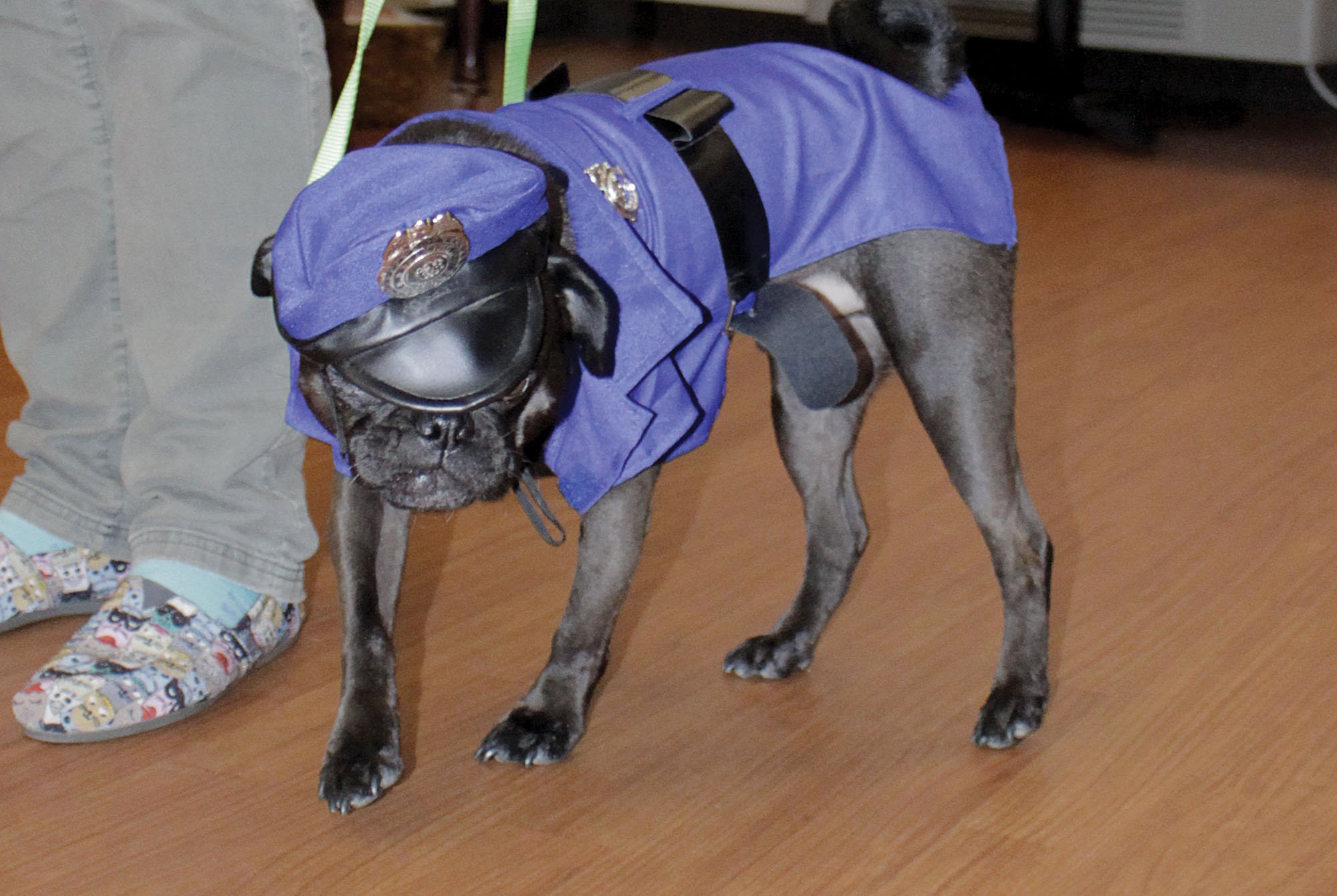Archie models his police costume