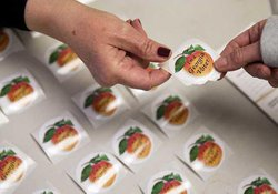 FCN Voting stickers 113018